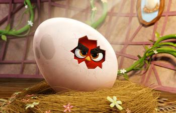 Nouveautés : The Angry Birds Movie