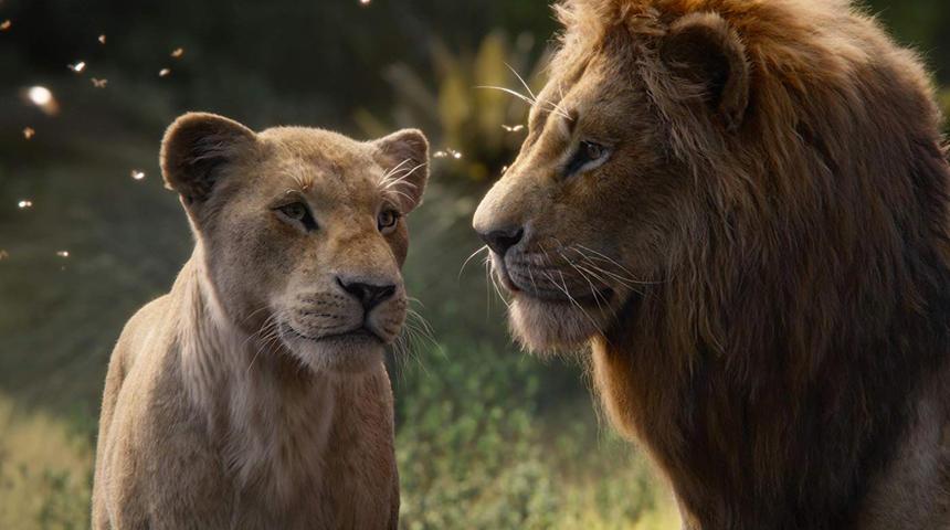 Découvrez de magnifiques images du Roi lion