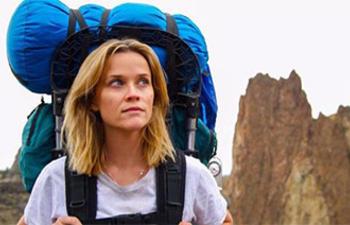 Wild sortira dans la période de sélection des Oscars 2015