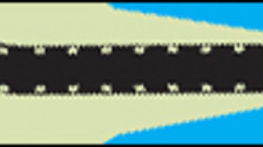 FFM 2009 : L'affiche officielle dévoilée