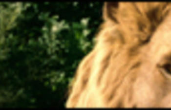 Fox prend la relève de The Chronicles of Narnia