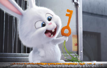Sorties Blu-Ray et DVD : The Secret Life of Pets
