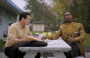 Sorties à la maison : Green Book