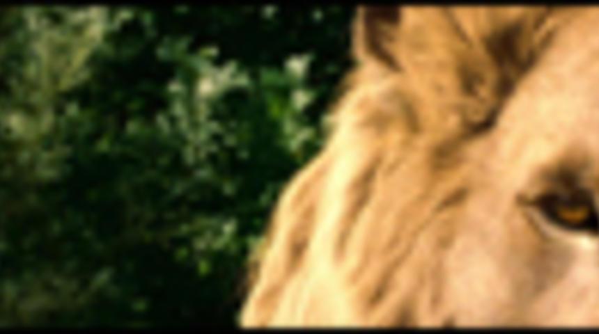 Fox prend la relève de The Chronicles of Narnia