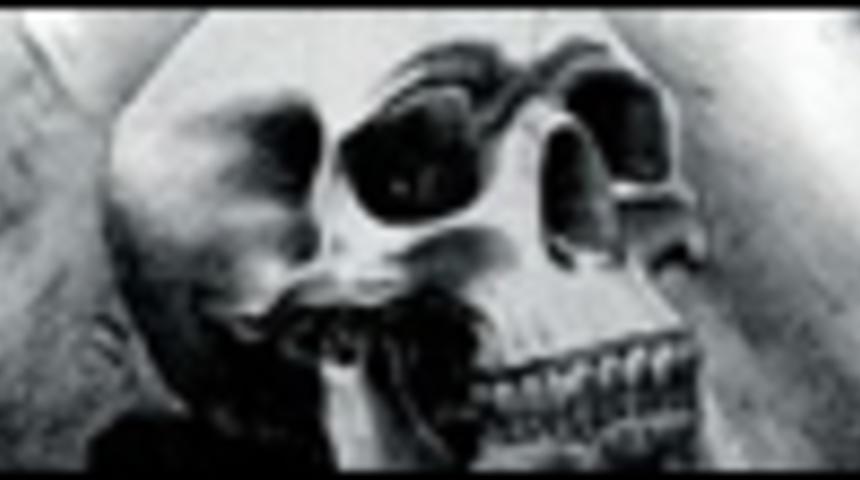 Affiche du film The Expendables